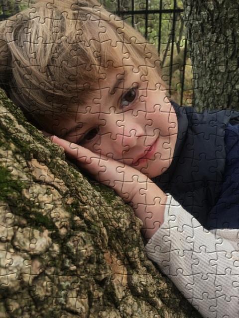 puzzle puzzle.jpg